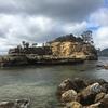タスマニア ロードトリップ その16 Tasman peninsula Port Arthur