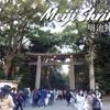 2019年の運命を決める!? 初詣は明治神宮 / Meiji Shrine