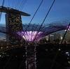シンガポール旅行記 3  ガーデンズ・バイ・ザ・ベイ は夕方からがベスト