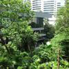 大都会の真ん中に潜む、緑と歴史の空中庭園へ。「アジアソサエティ」@金鐘