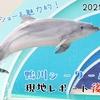 【レポ#23】魚もショーも盛りだくさん!鴨川シーワールド(2021/4/27)【後編】