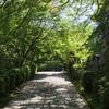 京都五門跡 曼殊院門跡 静かなる時間