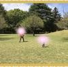 国際基督教大学のバカ山で遊ぶ お花見の次は新緑の芝生でピクニック!