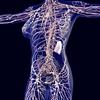 【水素セラピスト検定】ヘルスケア編 『免疫細胞の働き Part.3』