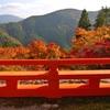 紅葉スポットで秋を満喫しよう!