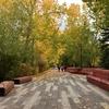 カナダ、カルガリー秋の風景。