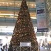 クリスマスツリー ~相模大野ステーションスクエア~