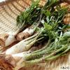 """春の味覚""""うど""""はクロロゲン酸が豊富!酸化予防に"""