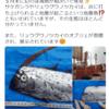 【前兆現象】長崎県では地震の前兆とも言われている『リュウグウノツカイ』・『サケガシラ』・『クジラ』の死骸が相次いで見つかる!地震との関係は科学的な根拠は無いとのことだが、『南海トラフ地震』などの巨大地震が心配!