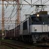貨物列車撮影 8/25 久々の夕練 EF64代走79レなど