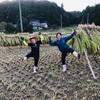 芋掘り&稲刈り!
