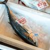 2021年6月1日 小浜漁港 お魚情報