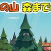 【ペーパーマリオ オリガミキング】 デクの山 森までの道 #2