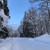 沖縄の冬の防寒対策って?久米島に5年移住してたわたしが長野の雪景色から思い出すよ