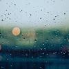 今週は大雨・台風であまり走れず…【週記(20.10/4~10)】#168点目
