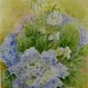 2017年:6月『梅雨時を描く(1)ー 紫陽花・ホタルブクロ・ドクダミ』