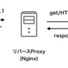 【Nginx】Nginxについて(概要)