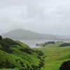 オタゴ半島 世界一の急坂 NZ紀行⑫