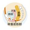 産後女性の尿漏れ、ストレスですよね。
