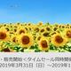 ANA国内線「ANA SUPER VALUE」と「特典航空券」の一斉発売、先行予約を開始(3~10月分)