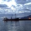 [246](投稿)福島第一原発処理水、政府は海洋放出の意向