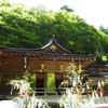 緑深い夏の貴船神社へ  -七夕笹飾り-