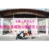 【公園情報】無料で楽しめる!和歌山県植物公園緑花センター