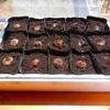 北海道で本当に里芋なんて作れるのか?