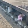i-smartのウッドデッキ下が今家庭菜園グッズの収納場所