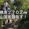 【登山】標高2702m「白山」にベビーキャリアで挑戦!初心者にオススメだという砂防新道コースの日帰りルートを紹介