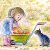 封筒「かぼちゃ畑」