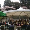バンバ桜まつり