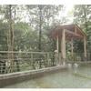 【神奈川】家族旅行にオススメ!箱根湯本温泉ホテルおかだに泊まってきた