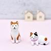 【犬と猫について】こどもの「こどものころからのぎもん」