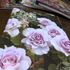 薔薇カタログ