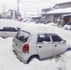 雪のない冬