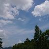 今日の犬山城は…『梅雨明けじゃね?』