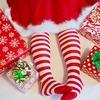 子供のクリスマスプレゼント選び(幼稚園編)