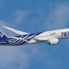 【ANA】JA801A、リペイントへ
