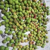 大量の梅の使い道と保存方法など