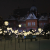 夜の北海道庁 ライトアップ