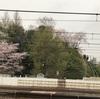 T-WALL江戸川橋のトップロープ5.10b