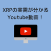 XRPの本当の実需が分かるYoutube動画をご紹介!