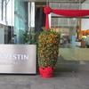 ウェスティンシンガポールに宿泊しました‼️マリーナベイ観光にもアクセスが便利❗️
