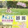 6月21日  ヨガ奉り @浅草橋ヒューリックホール 駅近