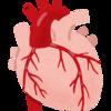 ガイドラインに基づく冠動脈疾患の診療について