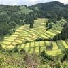 眺望バツグン!!「慶地の棚田」を見に行ってきた。