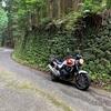 コンクリート舗装の渋い坂道「鶴峠」徳島県勝浦町