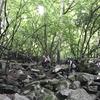 2017/07/30 茅ヶ岳 〜日帰りまっしろハイキング〜