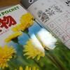 はなまるリトル3日目植物図鑑を見ながら...
